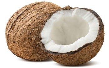 Kokosnuss - die natürliche Verpackung